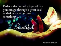 butterfly is proof